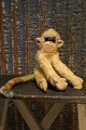 Old Steiff toy 